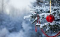 Snow, Christmas Tree en Red Ornaments...