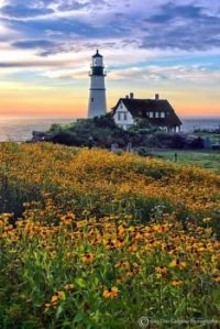 Portland Head Lighthouse by Don Gorgano