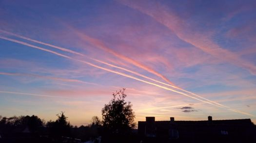Contrails at sunset
