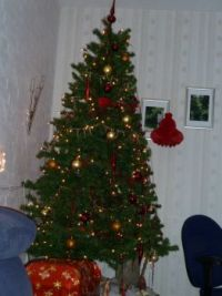 kerstboom at home