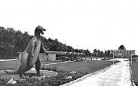 THEME:  Dinosaurs and Prehistoric Animals