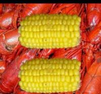 Crawfish and corn -- oh, yes!