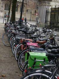 Bruges 29.01.14 032