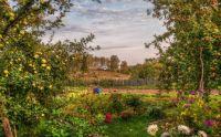 Apple Trees & Flower Garden