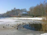 Winter2010 090