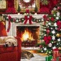 Christmas Pets Nap