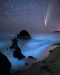 Comet Neowise on the coast of Oregon