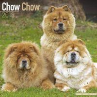 2018 Wall Calendar Chow Chow