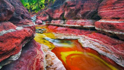 Mountain brook in Red Rock Canyon in Waterton Lakes National Park, Alberta, Canada