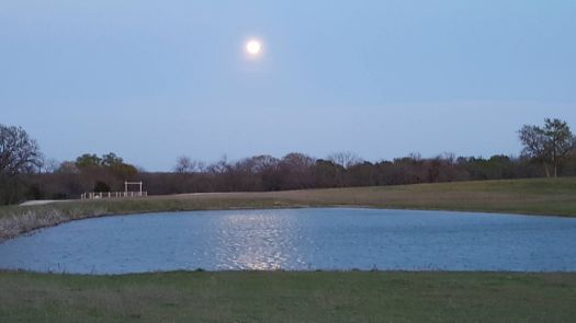 Mar 23rd - Moonrise over Texas stock pond