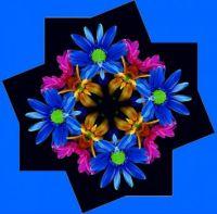 052018 Floral Kaleidoscope