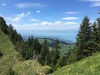 Summer Hiking: Lake Geneva / Lac Léman