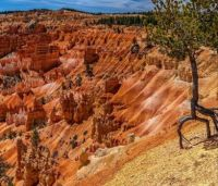 Bryce Canyon National Park ..........