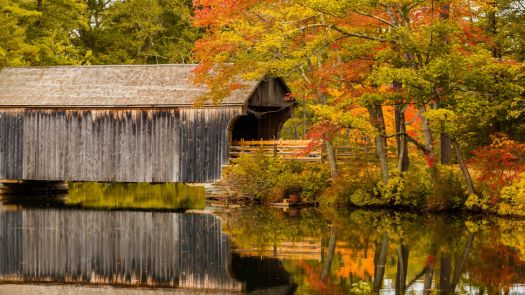 covered-bridge-in-fall-1495295179CRs