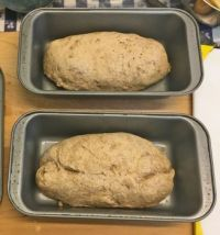 Making Kossamu's bread: Try #1 - fail!