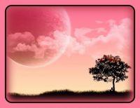 Pinknblack Landscape
