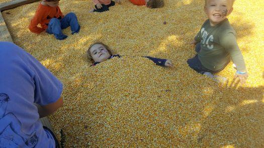 quick corn