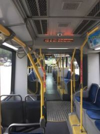 Houston Bus