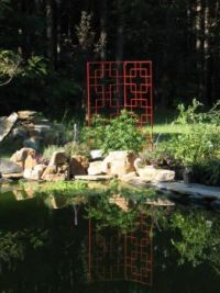 Pond and trellis bed June 11 2016