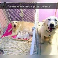 Proud parents