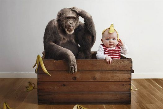 baby in toybox