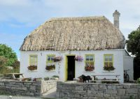 Irish thatched roof cafe                            1451-001