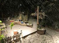 19 10 26 Snowstorm_IMG_0512