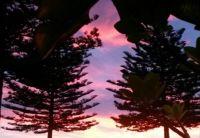 my window sunrise
