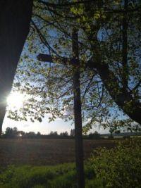 Kříž nad Vejprnicemi