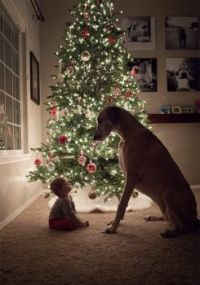 Baby and dog in front of Xmas tree