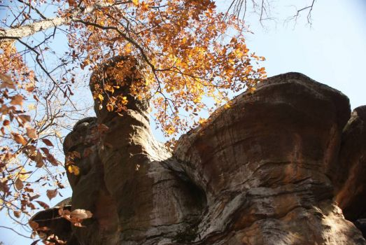 Garden of the Gods ~ Southern Illinois