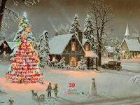 Christmas tree, oh Christmas tree ... how beautiful!