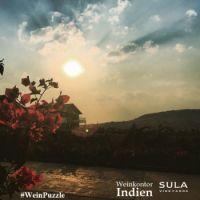 #WeinPuzzle - Sula vineyards (9)