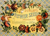 flower seed packet-