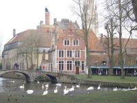 Bruges 29.01.14 009
