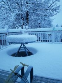 Snowmegageddon