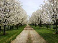 the lane to work-Kentucky3200x2400