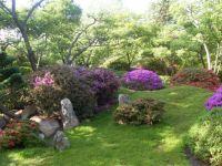 Botanická v Troji