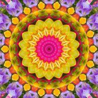 kaleidoscope 341 back to colours medium