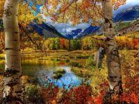 Perfect Autumn