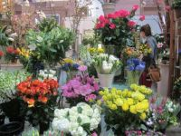 Flower stall, market, D.C. April 2016