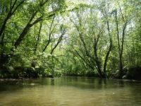 The reason why I love paddling the Etowah River
