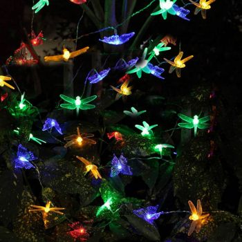 Dragonfly Fairy Lights