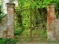 gate-838185_1280