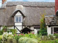 Thatched Cottage #1