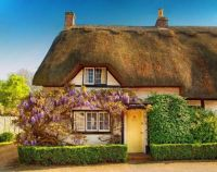 Wisteria on 17th Century cottage with yellow door
