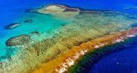 Caledonia Barrier Reef, Near Noumea, New Caledonia