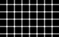 Blackballs optical illusion