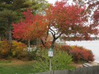 Autumn in New England 2