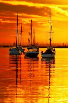 Safely In The Harbor At Sunset.....